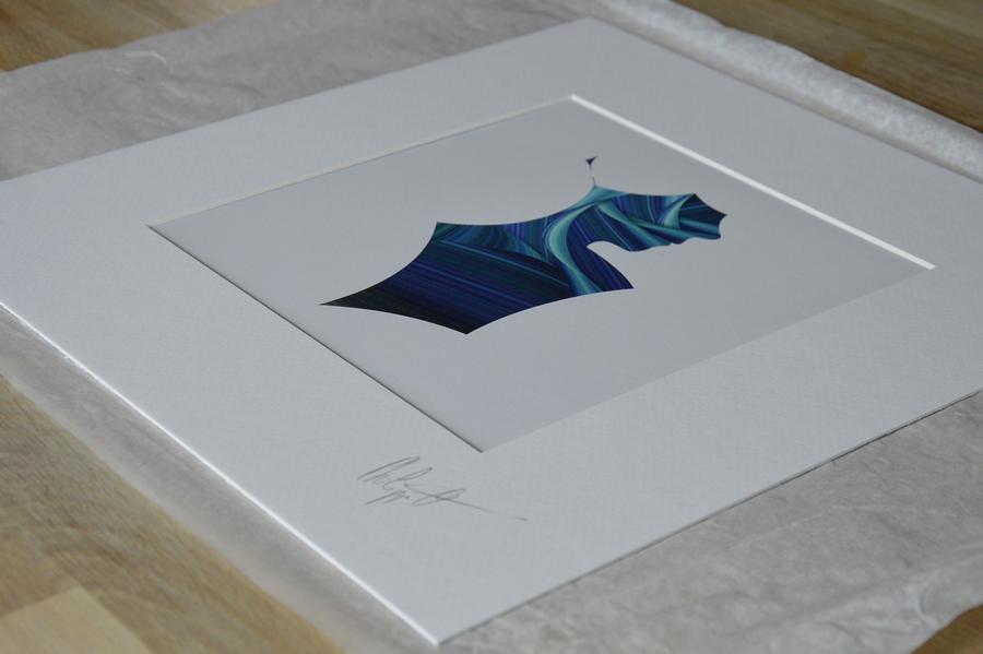 Impression Hahnemühle Fine Art Pearl de 285g