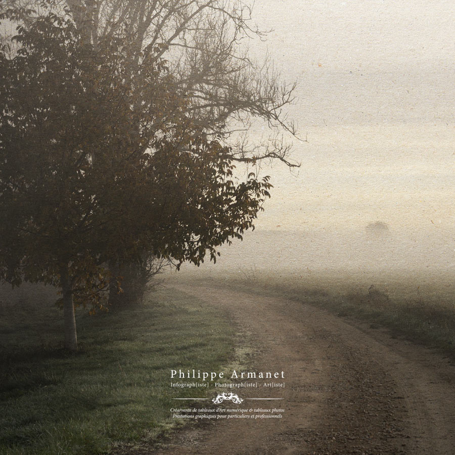 La poésie de l'image, Philippe Armanet
