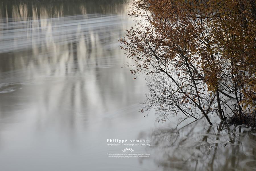 Expo photos de nature en Saône-et-Loire