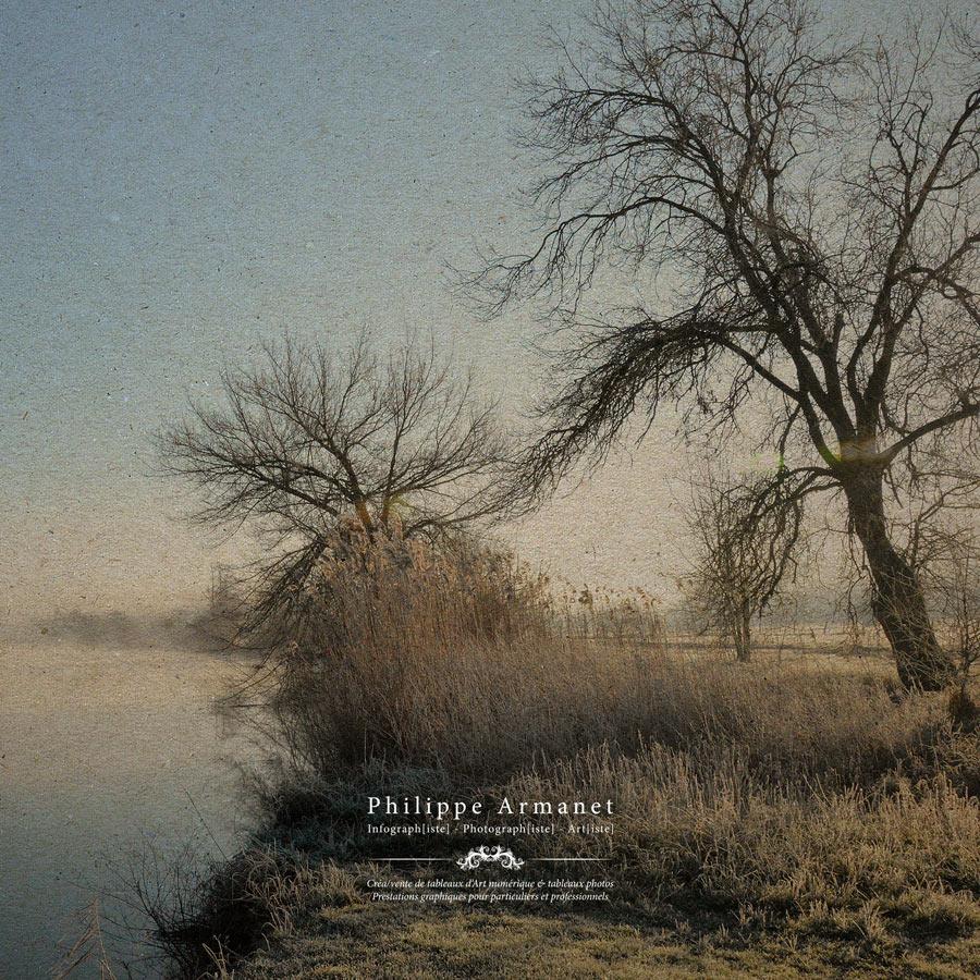 La poésie de l'image / Philippe Armanet.