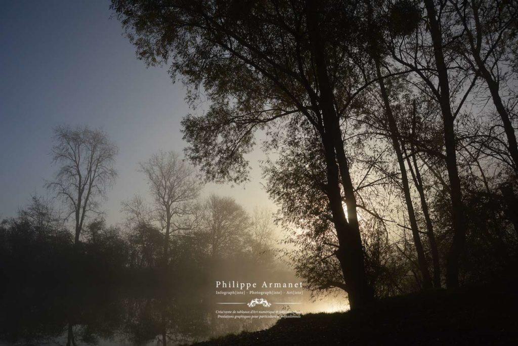 Photo de nature, Saône-et-Loire