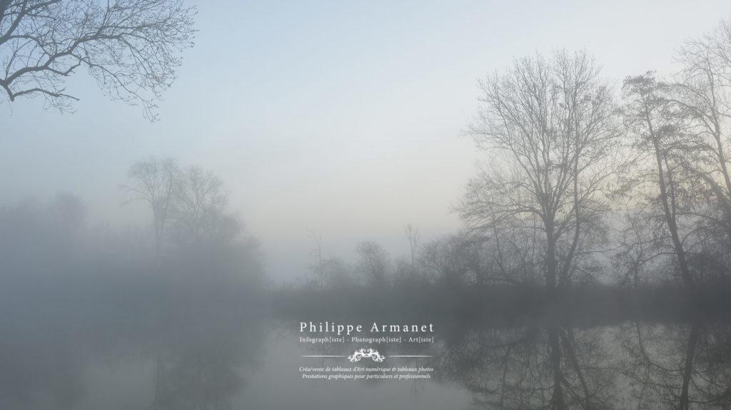 Photographie d'un matin brumeux au bord de la rivière : La Seille. Tous droits réservés : Philippe Armanet.