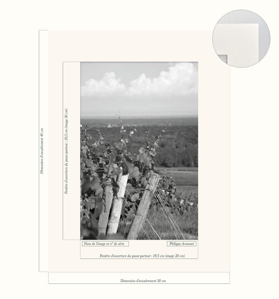 Photo à tirage limité des vignobles de Buxy en Côte Chalonnaise